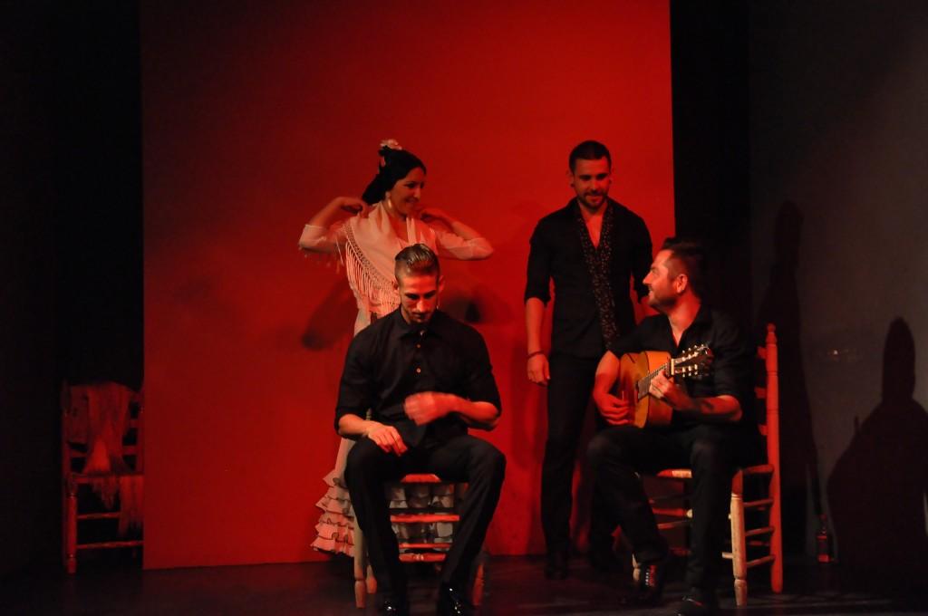 Flamenko Show