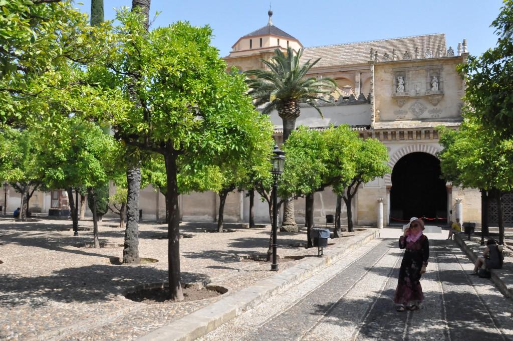 Kurtuba Camii (La Mezquita)