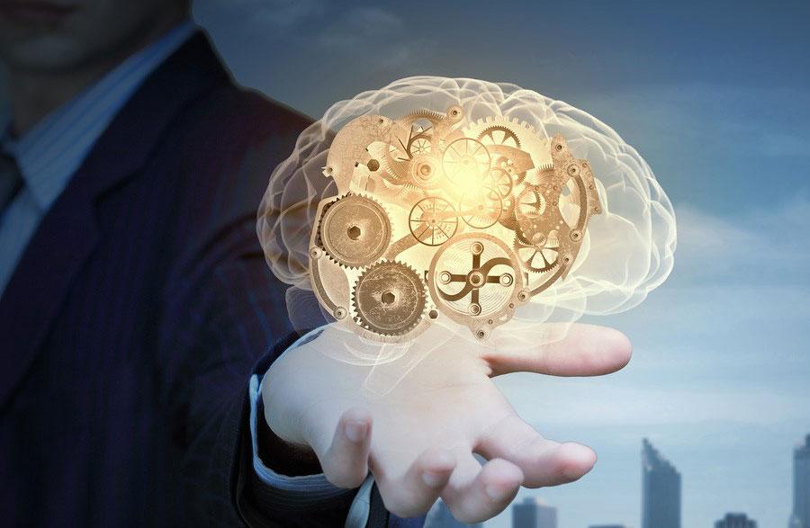 Sorumluluk Almak Beyni Geliştiriyor!