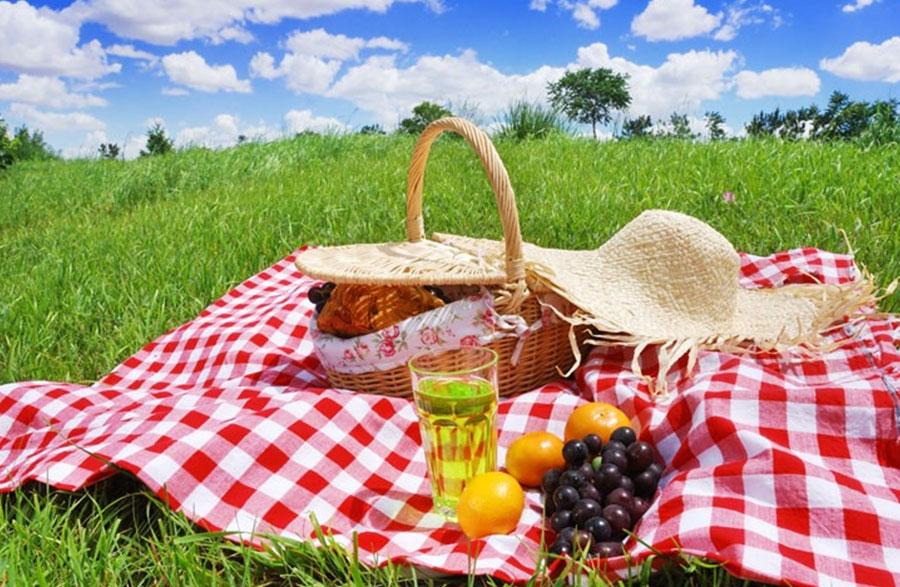 İstanbul'da Piknik Alanları ve Piknik Kombinleri