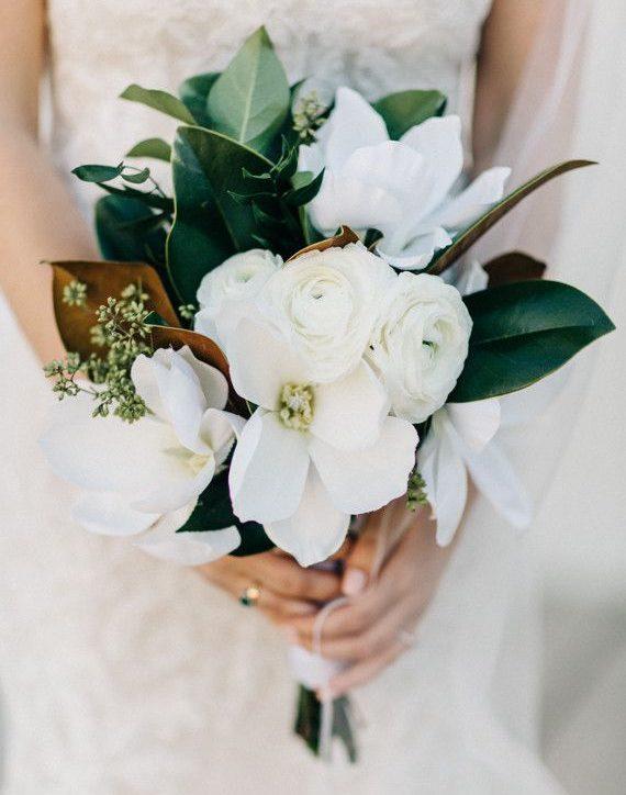 manolya-gelin-çiçeği