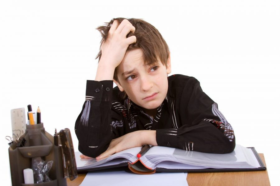 boy-studying-ss_24702862